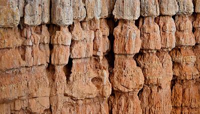 Hoodoo wall details Fairyland Trail