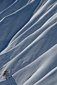 Snow mantled cliffs along the Rim Trail
