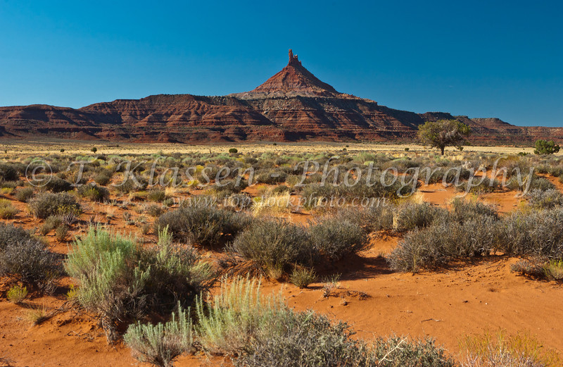 Geological formations of sandstone buttes and spires in Canyonlands National Park, Utah, USA, America.