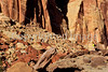 Day hiker in Capitol Reef Nat'l Park, Utah - 2 - 72 ppi