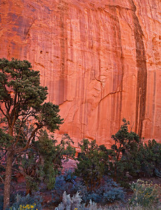 Long Canyon wall detail 3 image stitch