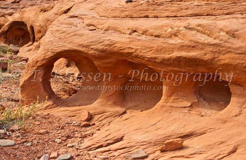 Erosion patterns in the  canyon walls along the Colorado river in Utah, USA, America.