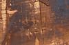 Petroglyphs on the canyon walls along the Colorado river in Utah, USA, America.