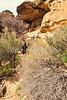 Grand Gulch-Bullet Cyn-Kane Gulch hike - 17 - 72 ppi