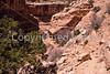 Grand Gulch-Bullet Cyn-Kane Gulch hike - 2 - 72 ppi