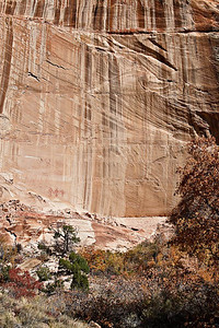 Calf Creek - Pictographs - Navajo Sandstone