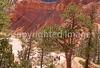 HI ut bryce 7 - ORps - jpeg - Hikers in Utah's Bryce Canyon National Park