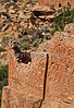 Hiker at Hovenweep National Monument on Utah-Colorado border - 20 - 72 ppi