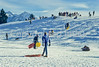 Sledders at Sugarhouse Park in Salt Lake City, Utah - 3 - 72 ppi