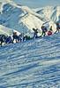 Sledders at Sugarhouse Park in Salt Lake City, Utah - 1 - 72 ppi
