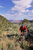Utah - Mountain bikers above Fisher Towers near Castle Valley - 21 - 72 ppi