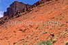 Utah - Mountain bikers above Fisher Towers near Castle Valley - 27 - 72 ppi