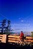 Cyclist at overlook along road through Bryce Canyon Nat'l Park - 2 - 72 ppi