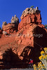 Touring cyclist in Red Canyon near Bryce Canyon Nat'l Park - 1 - 72 ppi