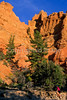Mountain biker in Casto Canyon near Bryce Canyon Nat'l Park, Utah - 3 - 72 ppi