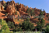 Cycle Utah riders in Red Canyon near Bryce Canyon Nat'l Park - 5 - 72 ppi