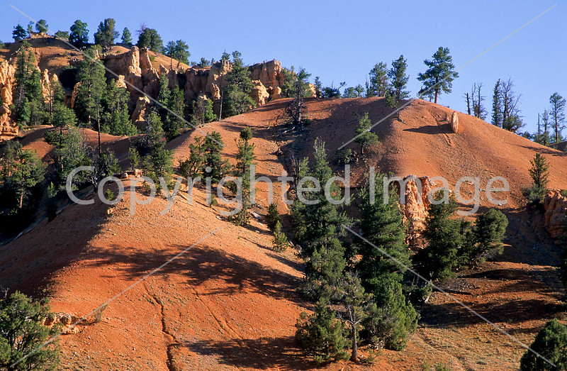 Scenery in Utah's Red Canyon near Bryce Canyon Nat'l Park - 12 - 72 ppi