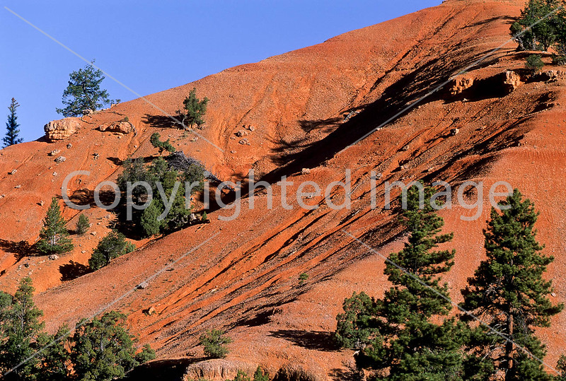 Scenery in Utah's Red Canyon near Bryce Canyon Nat'l Park - 6 - 72 ppi