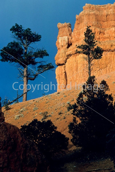 Scenery in Utah's Red Canyon near Bryce Canyon Nat'l Park - 8-Edit - 72 ppi