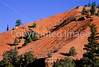 Scenery in Utah's Red Canyon near Bryce Canyon Nat'l Park - 11 - 72 ppi