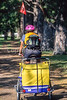 Mother with child in bike trailer - Liberty Park, Salt Lake City, Utah - 9-2 - 72 ppi