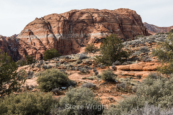 Snow Canyon (2-12-2019)