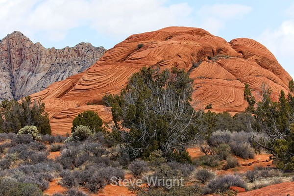 Snow Canyon 2-19-19