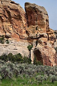 View of the Three Kings panel, from the end of the pubic access trail on the McConkie Ranch. The petroglyph panel is seen 2/3 up this 200 ft Navajo Sandstone Cliff, just right of the crack The Fremont figures are about 6 ft. tall McConkie Ranch, Dry Fork Canyon, Utah