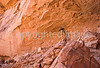 Grand Gulch-Bullet Cyn-Kane Gulch hike - 16 - 72 ppi