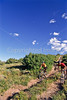 Mountain biker(s) at Devil's Camp above Fisher Towers near Castle Valley, Utah - 18 - 72 ppi