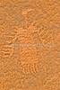 Petroglyph - on Amassa Back Trail near Moab, Utah - 4 - 72 ppi