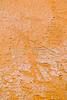 Petroglyph - Sand Island on San Juan River in southern Utah - 5 - 72 ppi