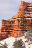 Scenery in Utah's Red Canyon near Bryce Canyon Nat'l Park - 18 - 72 ppi