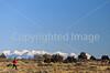 Runner on Gemini Bridges Trail near Moab, Utah - 6 - 72 ppi