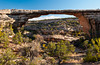 Owachomo Bridge in Natural Bridges National Monument, Utah, USA, America.