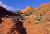 Snow Canyon State Park, Utah - scenic - 9 - 72 ppi