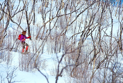 SN ut wstc 28 - ORps - Snowshoer in Utah's Wasatch Mountains near Salt Lake City, Utah - 72 ppi