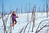 SN ut wstc 27 - ORps - Snowshoer in Utah's Wasatch Mountains near Salt Lake City, Utah - 72 ppi