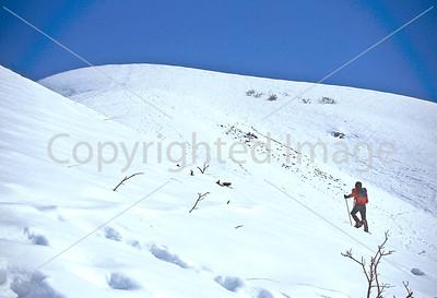 SN ut wstc 18 - ORps - Backpacker on snowshoes in Utah's Wasatch Mountains near Salt Lake City, Utah - 72 ppi