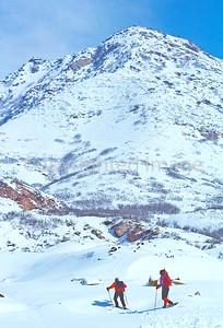 SN ut wstc 42 - ORps - Snowshoers in Utah's Wasatch Mountains near Salt Lake City - 72 ppi
