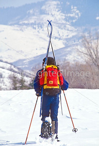 SN ut wstc 48 - ORps - Snowshoer packing cross-country skis into Utah's Wasatch Mountains near Salt Lake City - 72 ppi