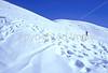 SN ut wstc 19 - ORps - Backpacker on snowshoes in Utah's Wasatch Mountains near Salt Lake City, Utah - 72 ppi