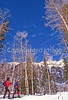 SN ut wstc 14 - ORps - Snowshoers in Utah's Wasatch Mountains, up Little Cottonwood Canyon near Salt Lake City - 72 ppi