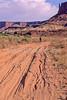 Mountain biker(s) on White Rim Trail - 351e - 72 ppi