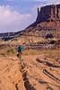 Mountain biker(s) on White Rim Trail - 372 - 72 ppi