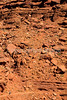 Mountain biker(s) on White Rim Trail - 388e - 72 ppi
