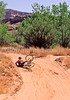 Mountain biker(s) on White Rim Trail - 384 - 72 ppi