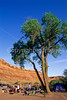 Mountain biker(s) on White Rim Trail - 402 - 72 ppi