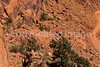 Mountain biker(s) on White Rim Trail - 417 - 72 ppi
