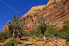 Hikers in Zion National Park, Utah - S11 - 26 - 72 ppi